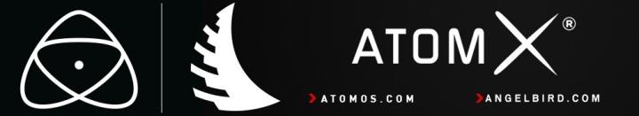 Angelbird AtomX