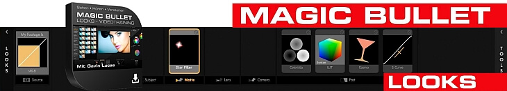 Magic Bullet Looks Videotraining